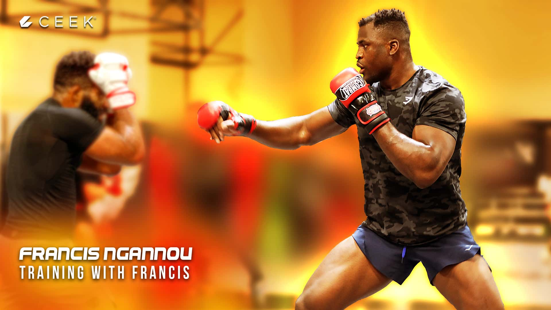 Training with Francis